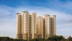 3 BHK 3 Baths Residential Flat for Rent